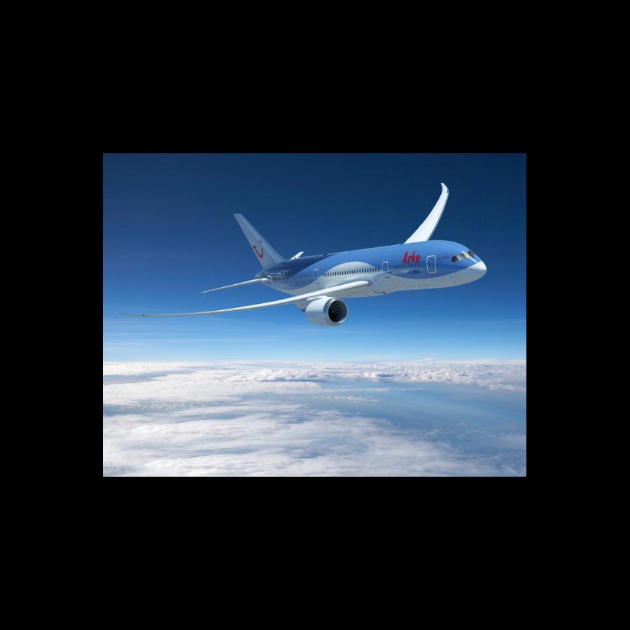 Tui 787 Dreamliner Desso Aviation